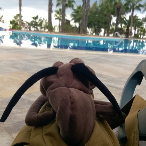 Urlaubsblog 6: Samstag