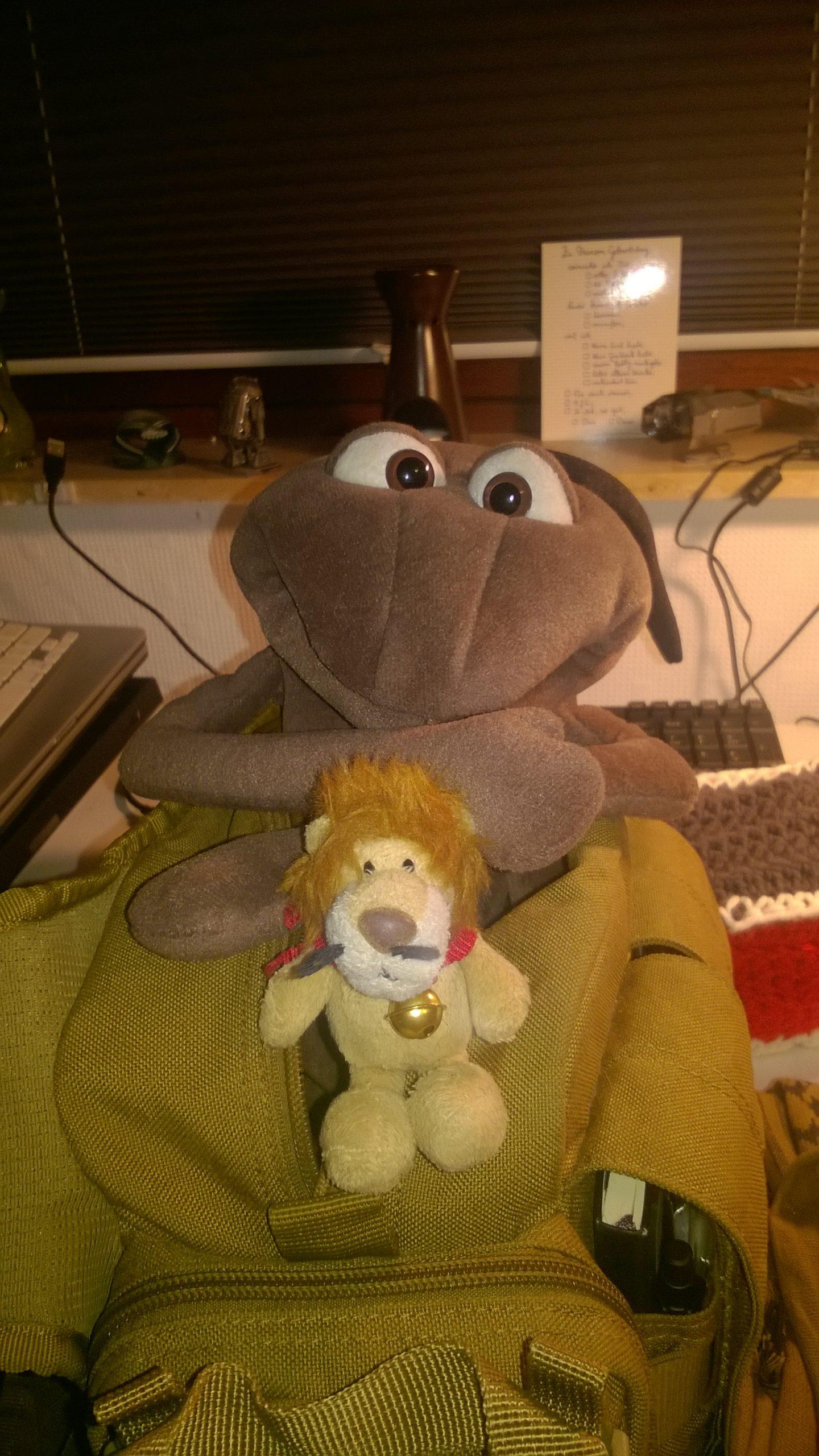 Ludwig Löwe kommt wieder zu Besuch!