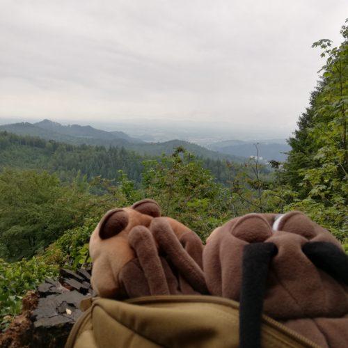 Schwarzwald 2020 - Tag 5