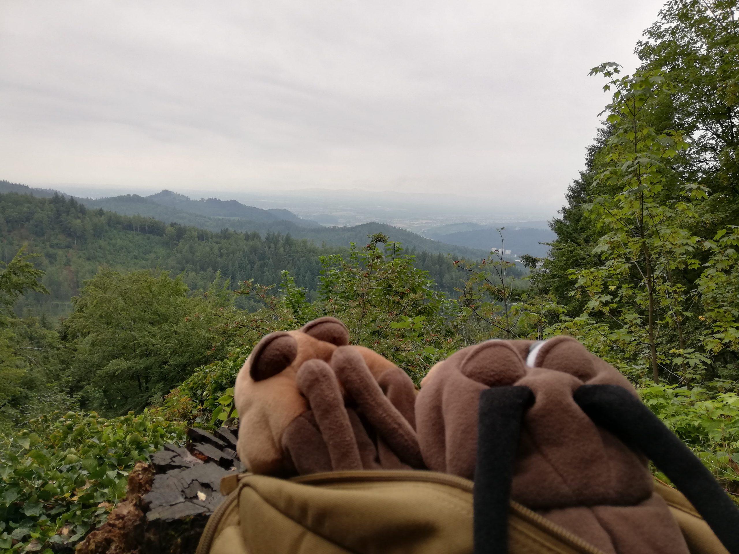 Schwarzwald 2020 – Tag 5
