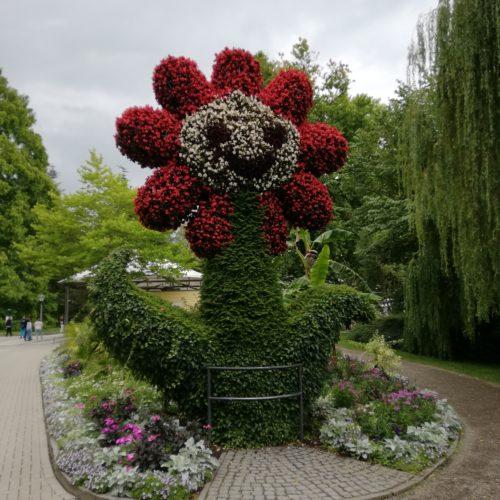 Schwarzwald 2020 - Tag 6