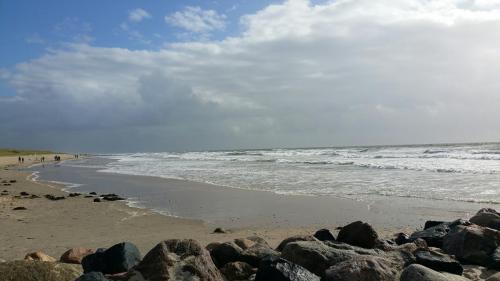 Die wilde Nordsee